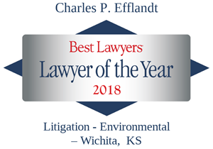 Efflandt---Lawyer-of-the-Year